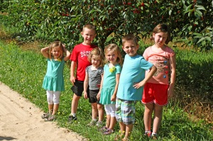 Six Kids Cherry Picking